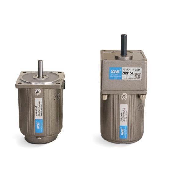微型交流减速电机6W